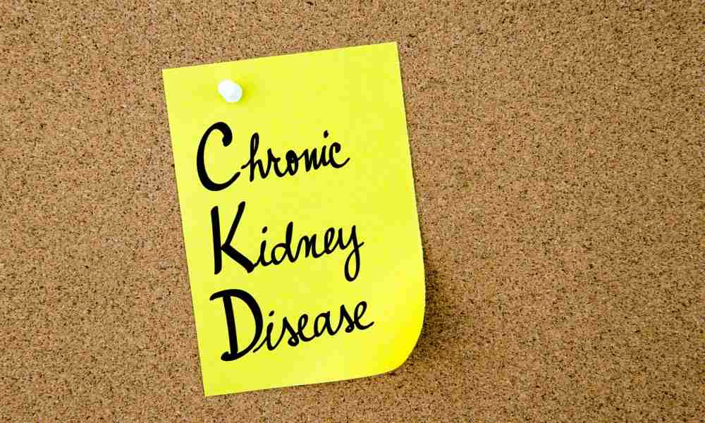 The Stages of Kidney Disease A General Overview of Trigger, Symptoms and Relief